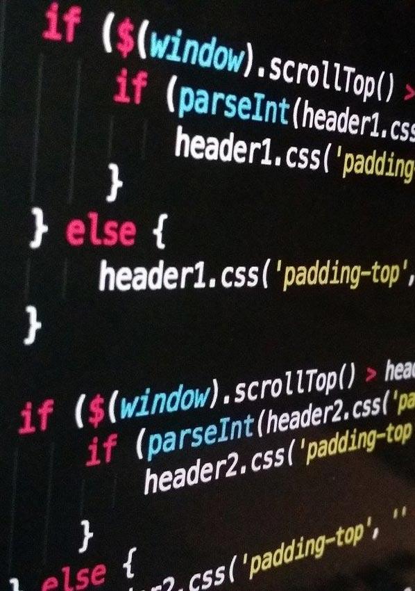 Entwicklung Webseite